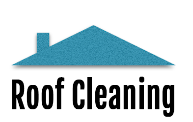 Roofing Cleaning by Top Notch